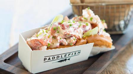paddlefish-00[1].jpg